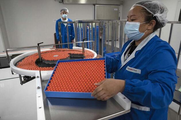 Çin aşısı SinoVac için geri sayım başladı... Süreç nasıl işleyecek?