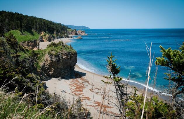 Rusya açıkladı: Bu adaya giden turistlere para ödenecek
