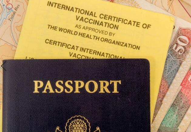 Uluslararası seyahatlerde 'aşı pasaportu' şartı getirilecek mi? DSÖ'den açıklama