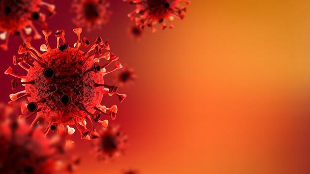 COVID-19'un Brezilya mutasyonu virüsten iyileşmiş birçok kişiye yeniden bulaştı